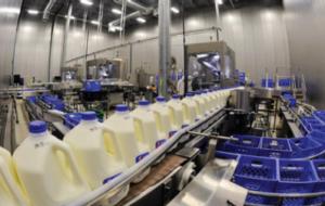 Dairy Sanitation